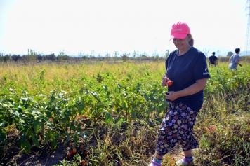 Aliağalı Kadınlardan Doğal Tarım Atağı Galeri